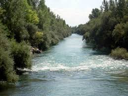 fiume tagliame